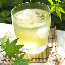 549 green tea shochu